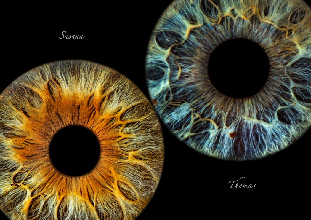 eyemazy iris fotografie